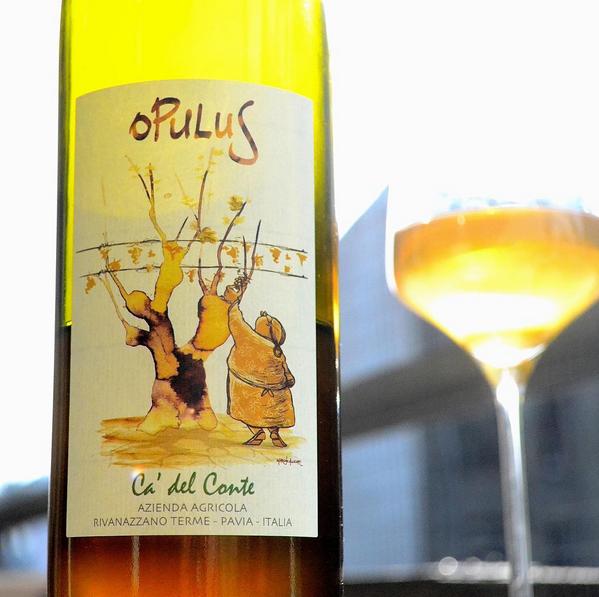 Ca' del Conte | Opulus 2013 | Pinot Bianco mfl.